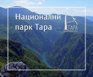 NP Tara